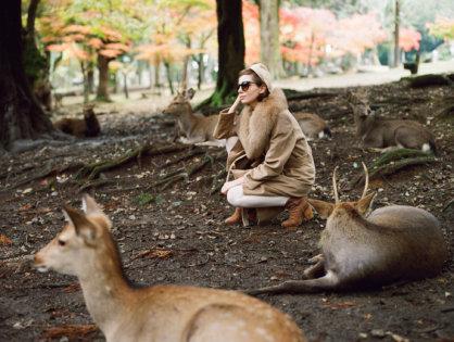 Journey to Nara